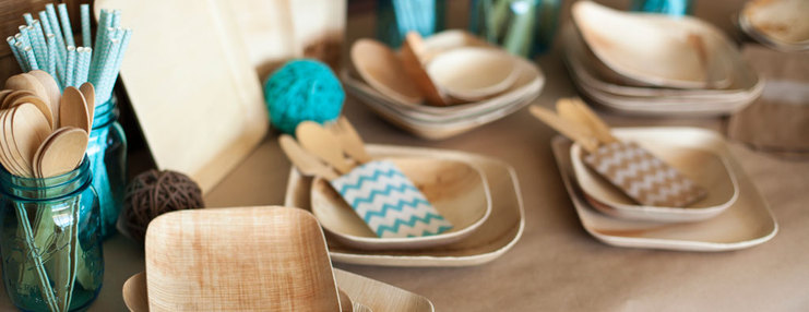 Eco Chic Disposable Dinnerware